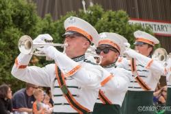 6/12 - Jackson, WI parade